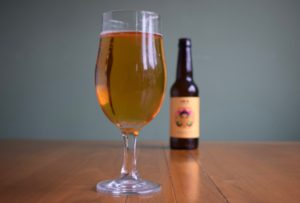"""Cipher """"Mindful IPA"""" review – low-alcohol (0.5%) India Pale Ale"""