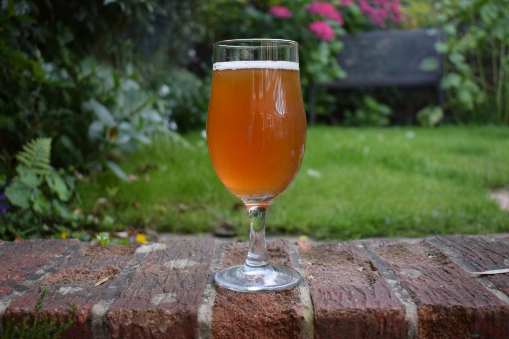 Unltd beer in a glass with garden in background