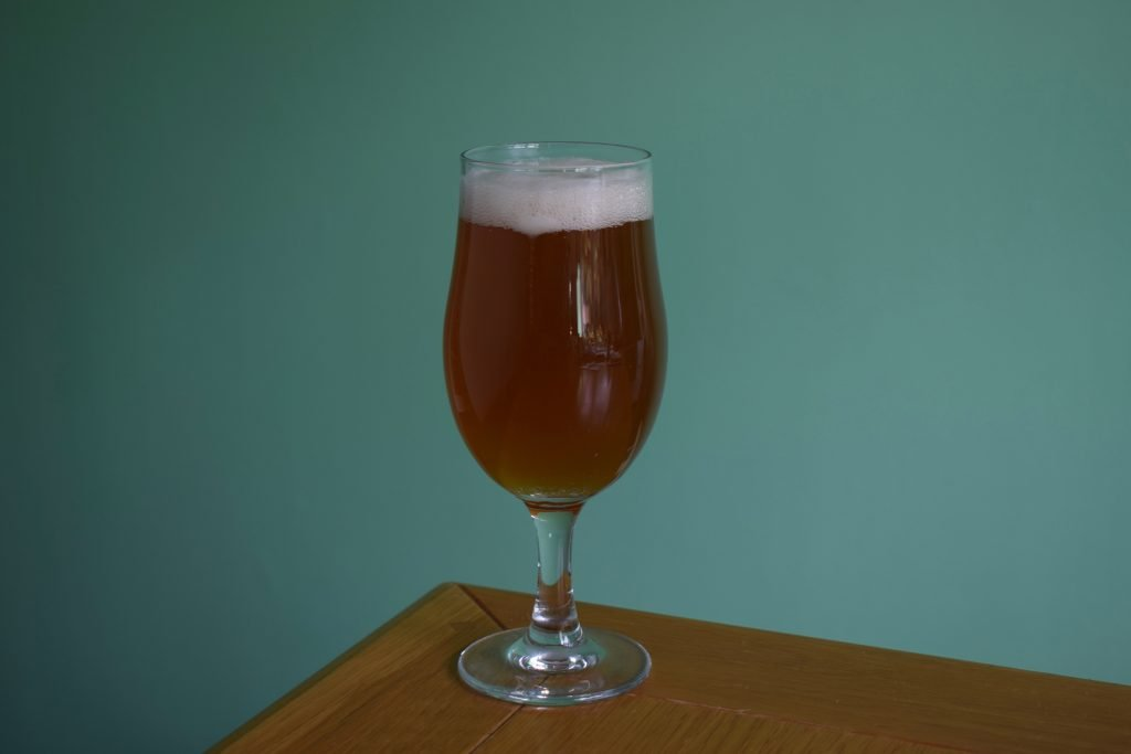 Insel Snorkeller's Sea Salt IPA - glass