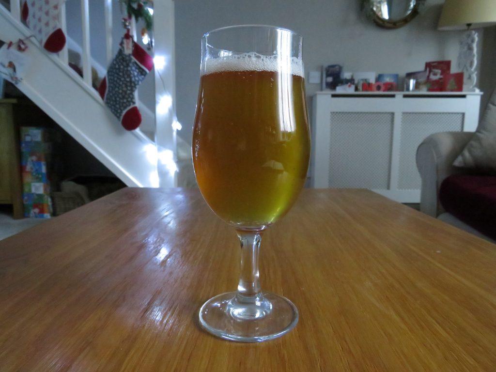 Fungtn Reishi Citra Beer glass
