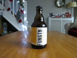 Fungtn Reishi Citra Beer bottle