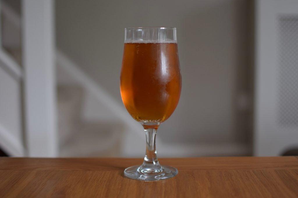 Fungtn Lion's Mane IPA in glass